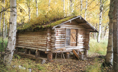 Western homesteader / trapper cabin